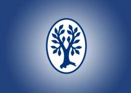 Thieme Logo auf Blau